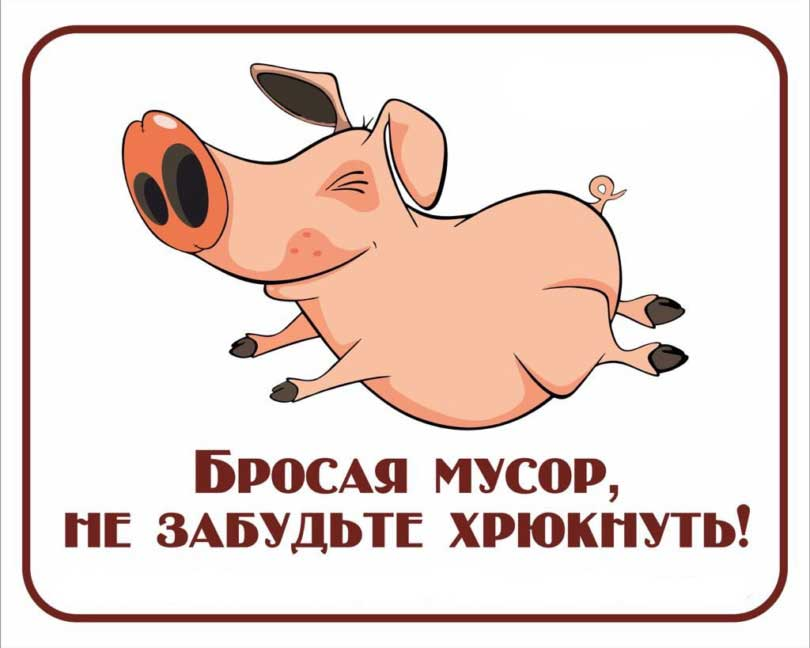Не будь свиньей картинка