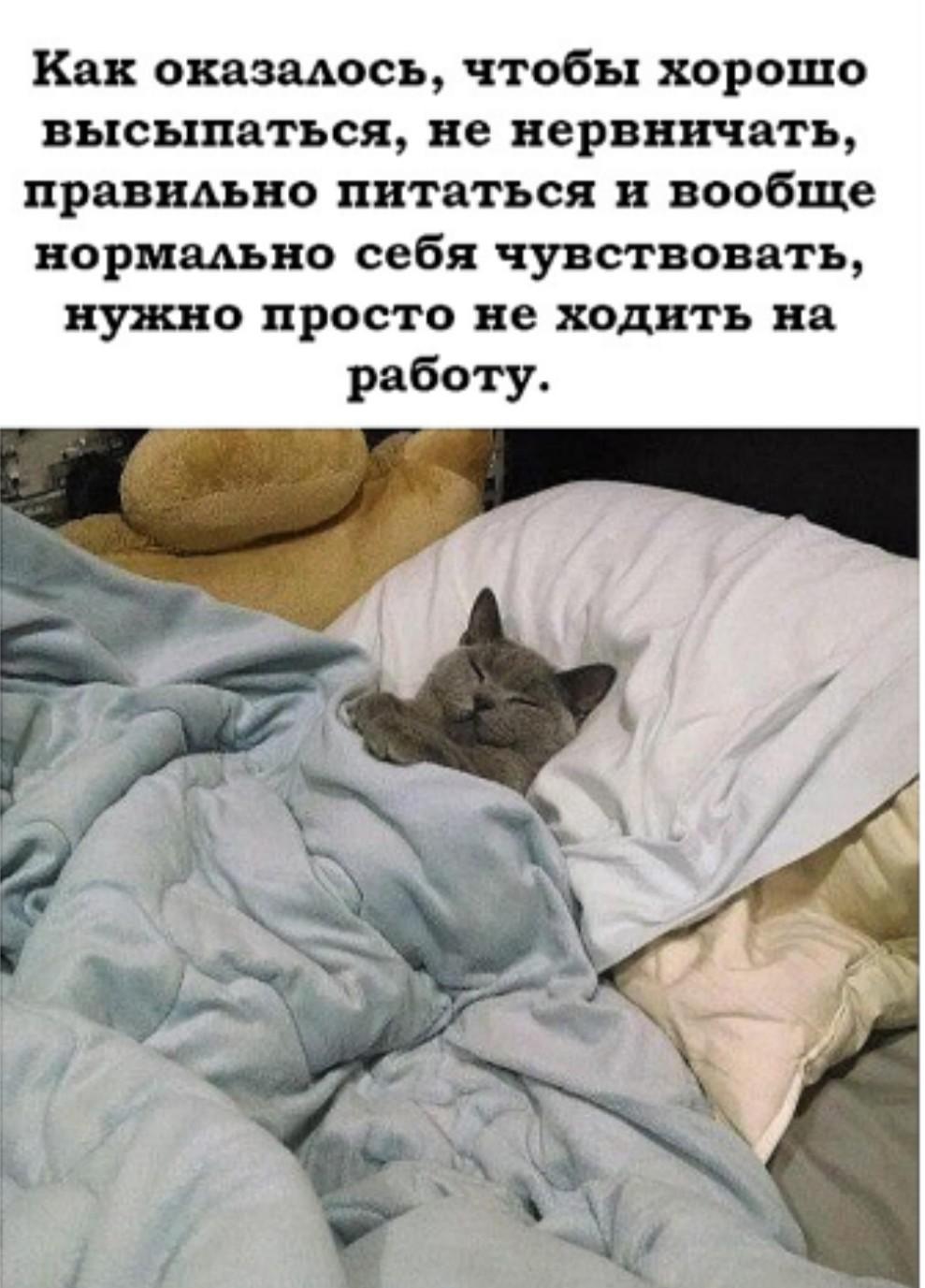 https://s00.yaplakal.com/pics/pics_original/6/5/4/13840456.jpg