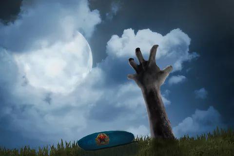 Синяя Береточка, Серый Волк и Робин Гад