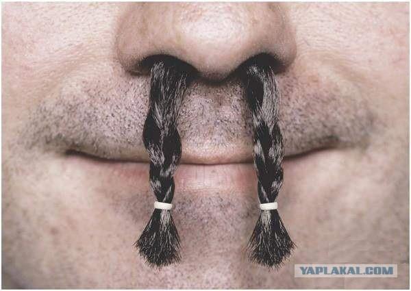 Жена заставляет щипать волосы из носа и ушей