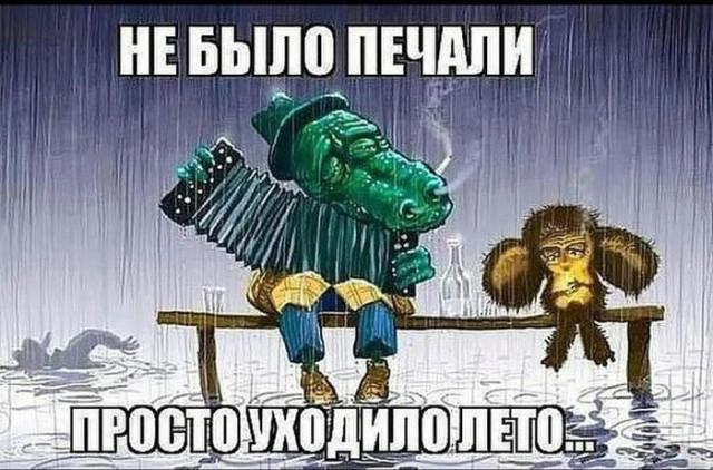 https://s00.yaplakal.com/pics/pics_original/6/5/8/14611856.jpg