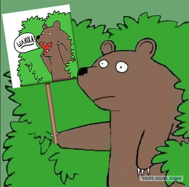 Медведь Которые Кричит Шлюха Фото