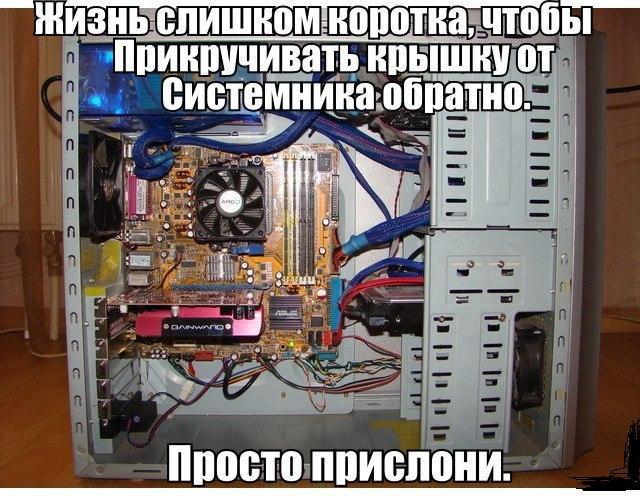 14790876.jpg