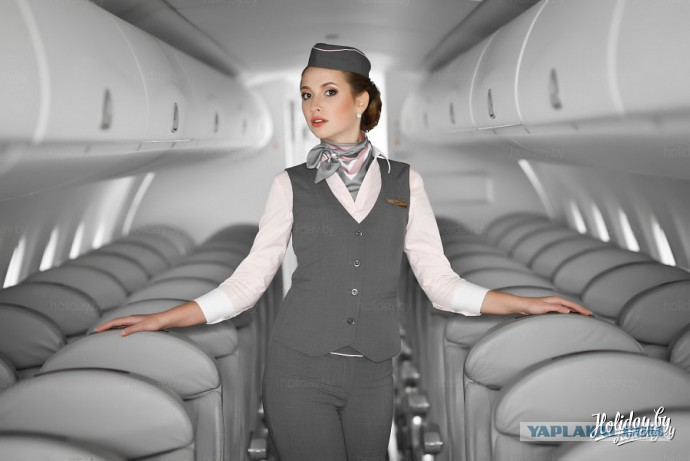 Шесть стюардес ебал один пилот