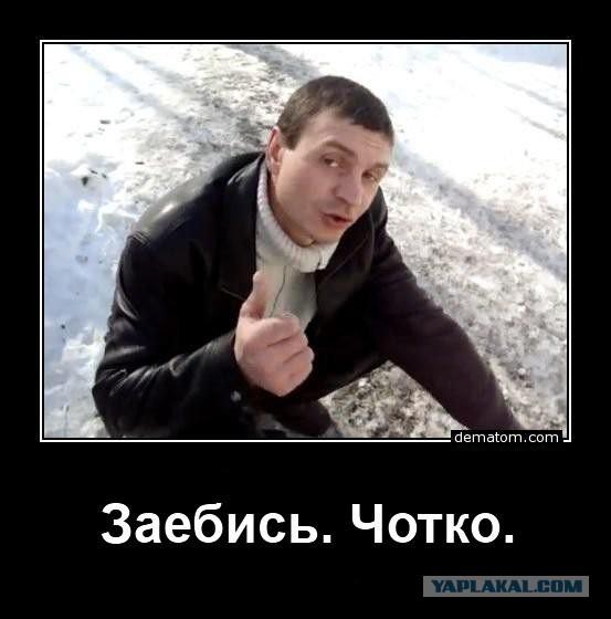 Волосатые письки и волосатая пизда / ФОТО