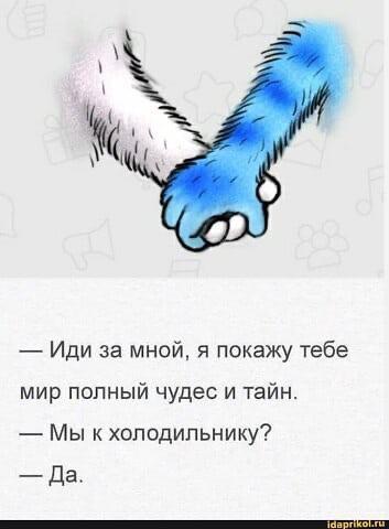 14843296.jpg