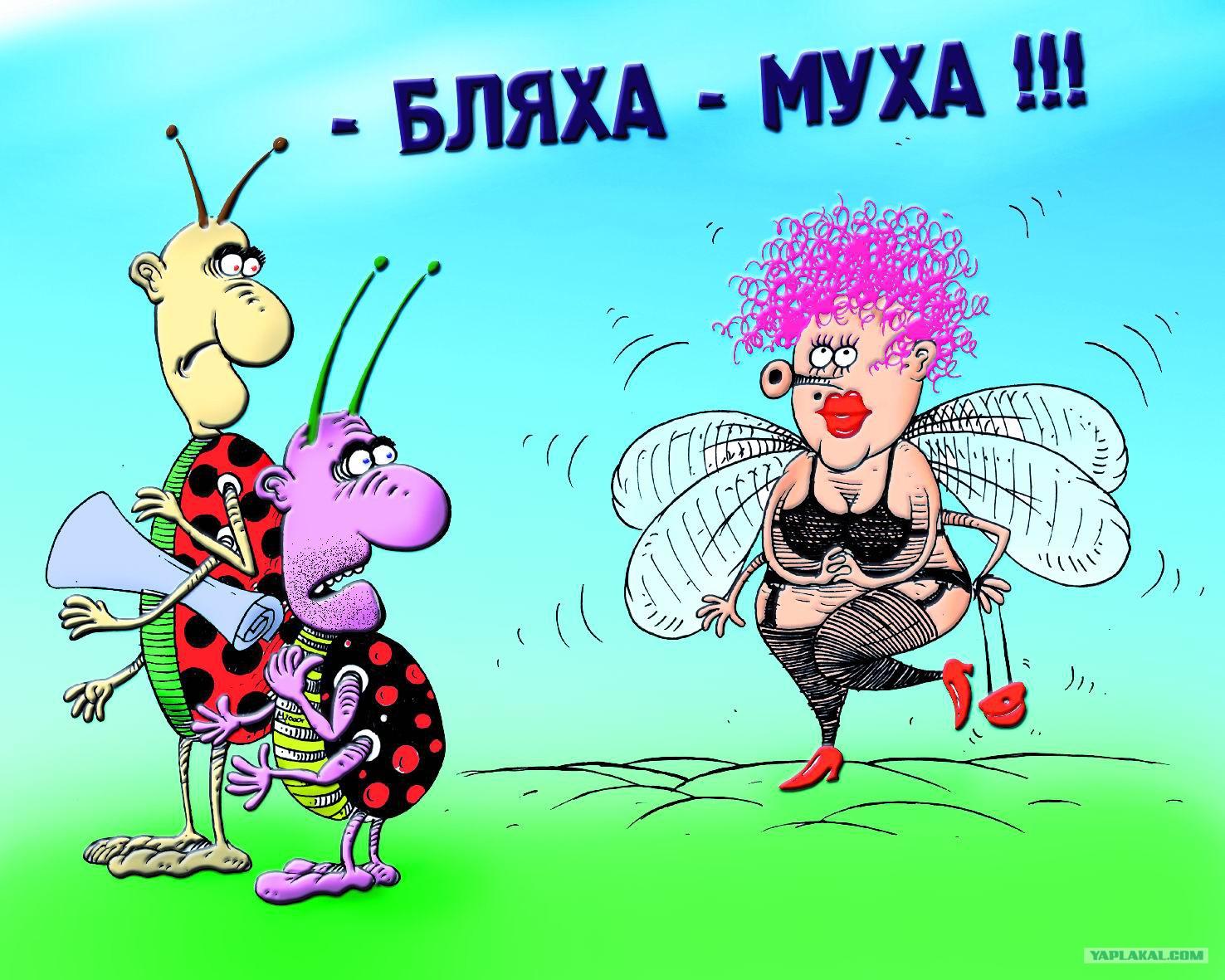 Поздравление бляха-муха для подруги