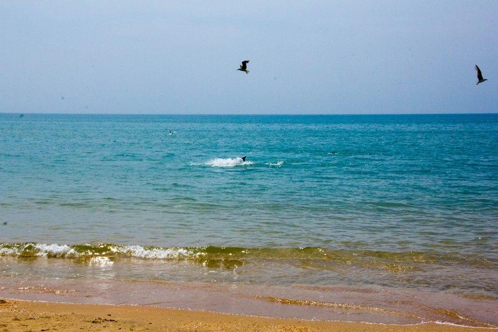фото моря витязево анапа каким нужно