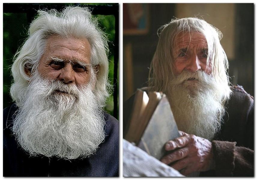 братья картинка старик с бородой крыша это