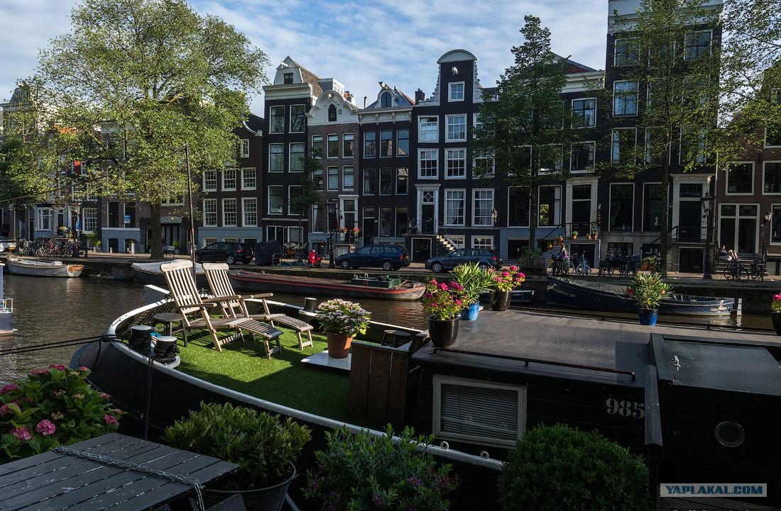 только смотреть картинки амстердама познакомили