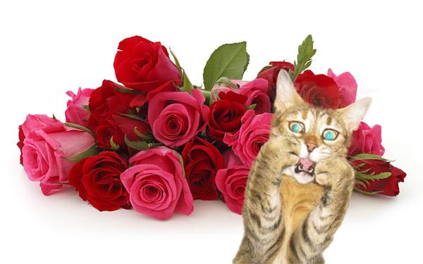 Фото цветы на пизде любимой женщины фото 142-850