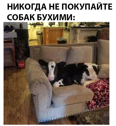 13713237.jpg