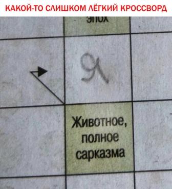 13489047.jpg