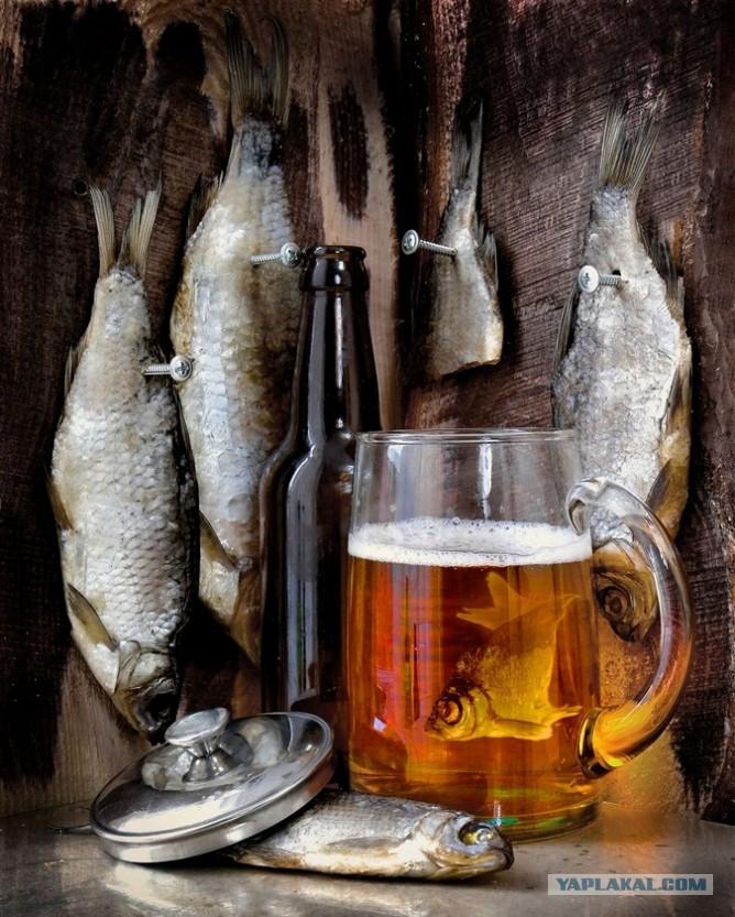 косте, судя красивые картинки с пивом и рыбой война, всем стало