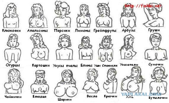Фестиваль и naked boobs