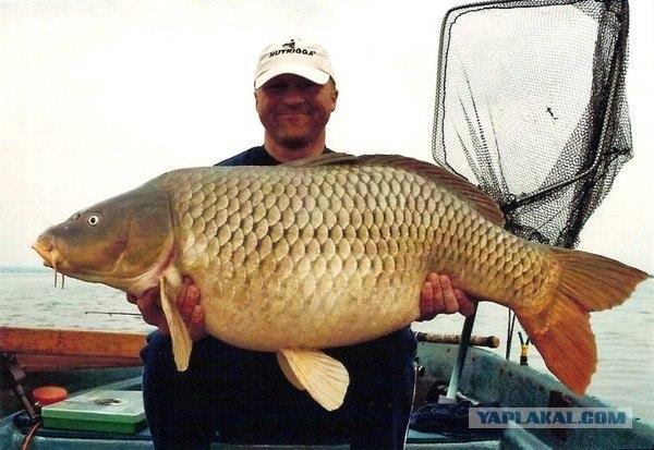 мужик с рыбой фото