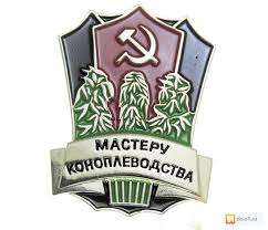 """""""Шо тут у вас? Розкажіть"""", - """"Я вперше бачу це все"""", - правоохоронці затримали власника плантації конопель у Вінницькій області - Цензор.НЕТ 4652"""