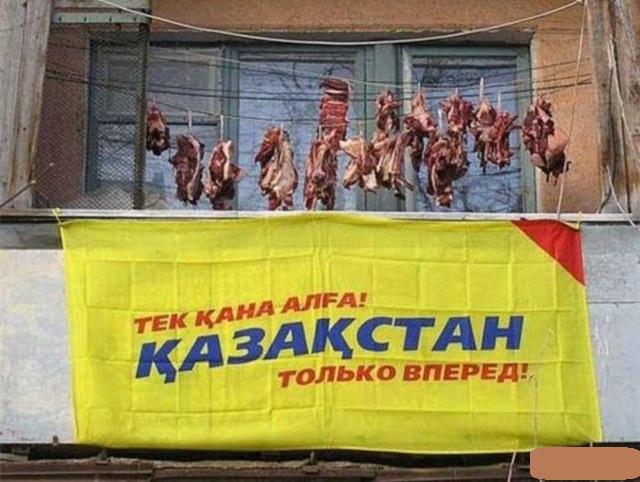 Генеральному директору, казахстан смешные картинки