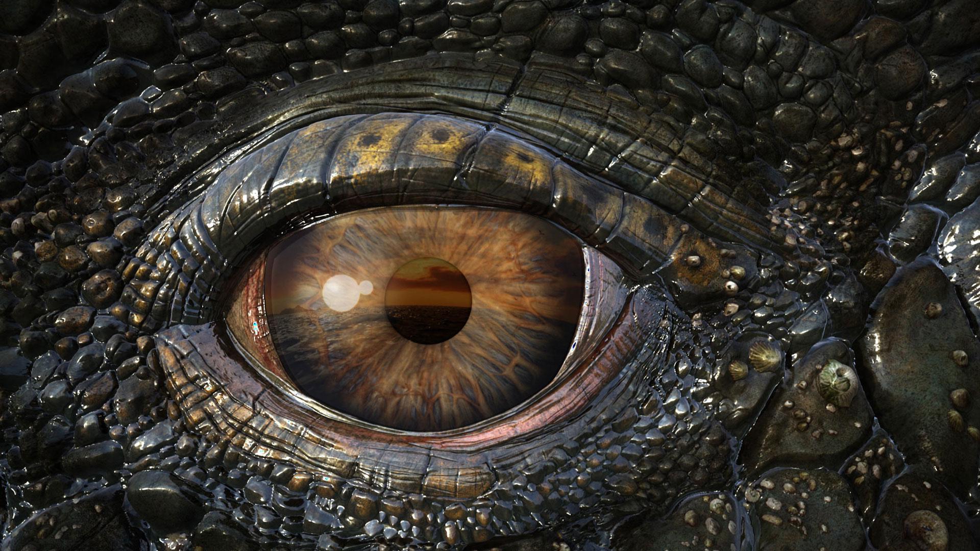 Картинки по запросу ГЛАЗА крокодила