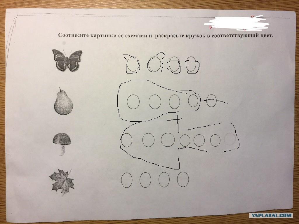 Соотнесите картинки со схемами и раскрасьте кружок