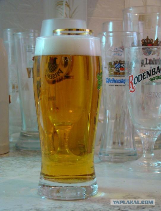 Пивной стакан спермы фото 10-898