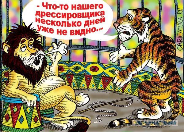 Картинки прикольные цирк