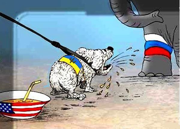 Горячая тема: Украина: Украина в панике! Выборов еще нет, а Россия уже виновата!