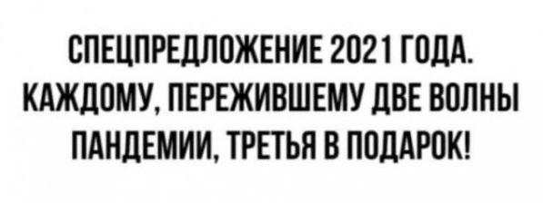 14887308.jpg