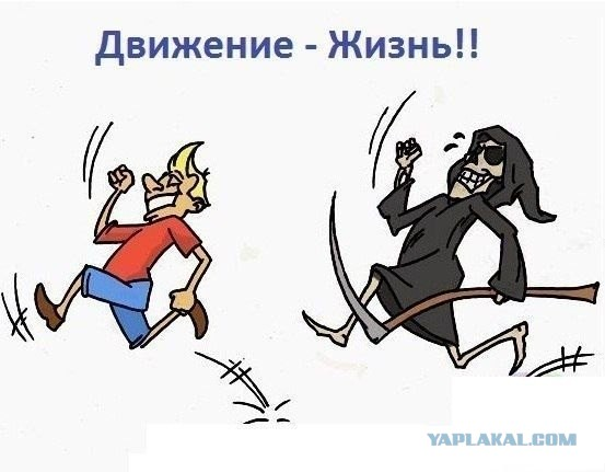 http://s00.yaplakal.com/pics/pics_original/8/0/5/3146508.jpg