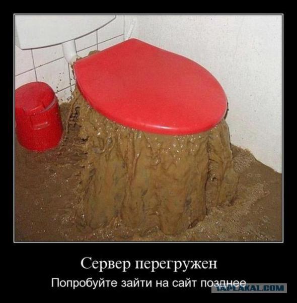 Жительница Ярославля собрала в своей квартире 30 ведер фекалий