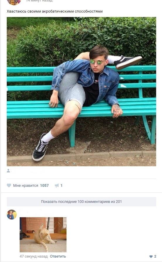 Смешные картинки из соцсетей с комментариями