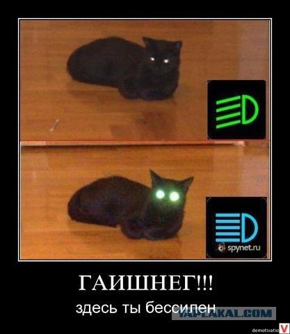 скачать игру дальний свет через торрент бесплатно русская версия - фото 6