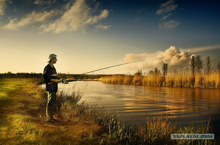 снасть для рыбалки кольцовка