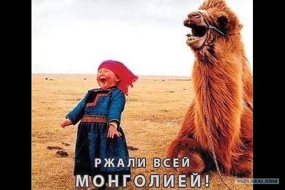 """""""Бобер, выдыхай"""", - во Львове сотрудники СБУ сожгли 250 кг гашиша стоимостью 50 млн грн - Цензор.НЕТ 2109"""