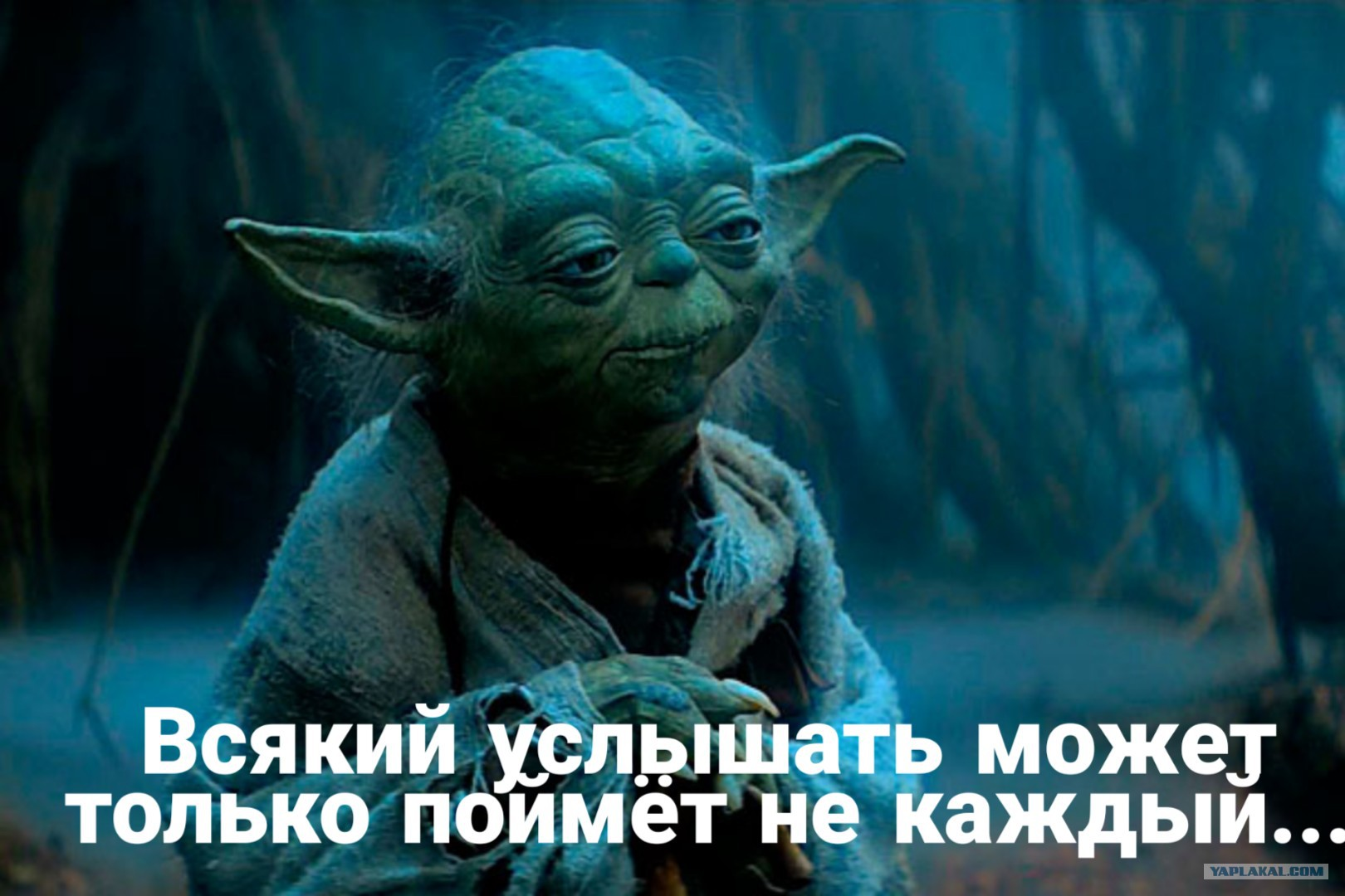 В Белгороде уволили Людмилу Грекову за гимн Звездных войн для мэра