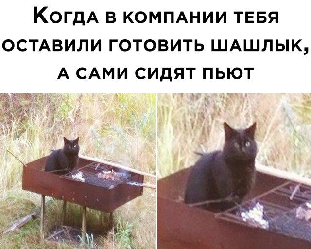https://s00.yaplakal.com/pics/pics_original/8/3/5/14597538.jpg
