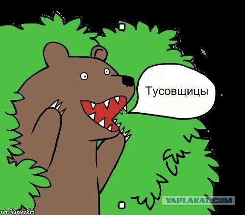 Медведь фото шлюха