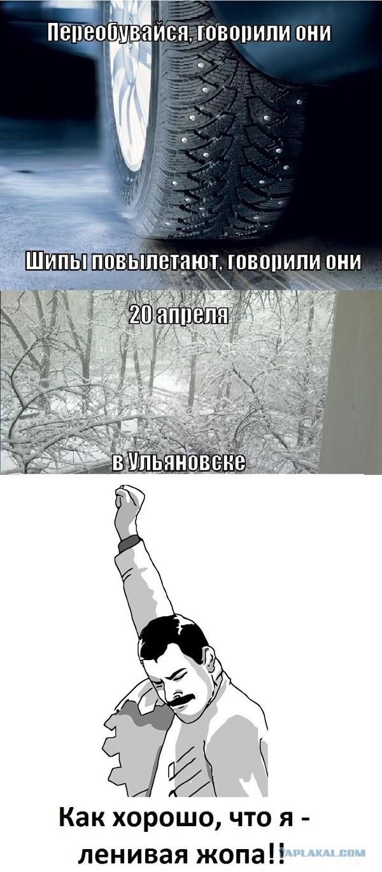 gastarbayter-vib-tolko-na-zhopa