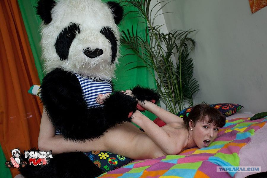 ебля с плюшевым пандой