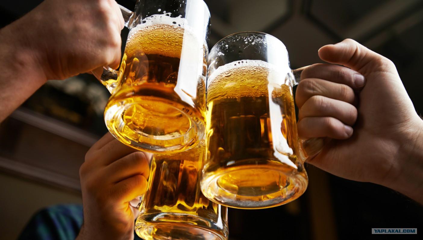 Как бросить пить пиво по вечерам и не только