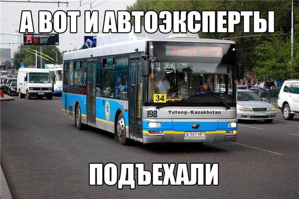 8315988.jpg