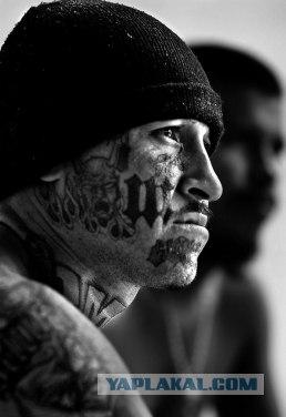 фото латиносы банды