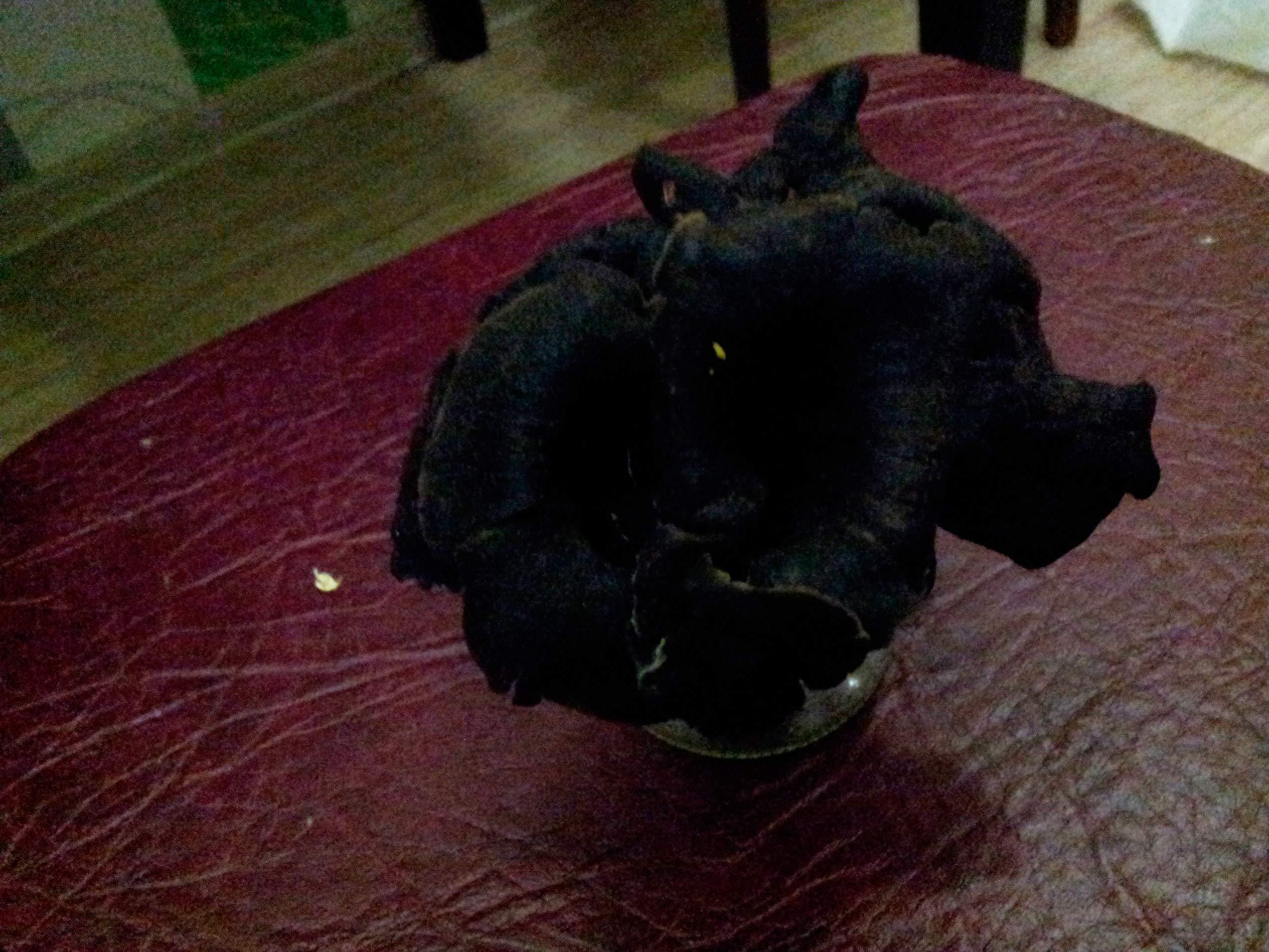 Череповецкий цветок