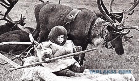 Истории малых народов: Коми