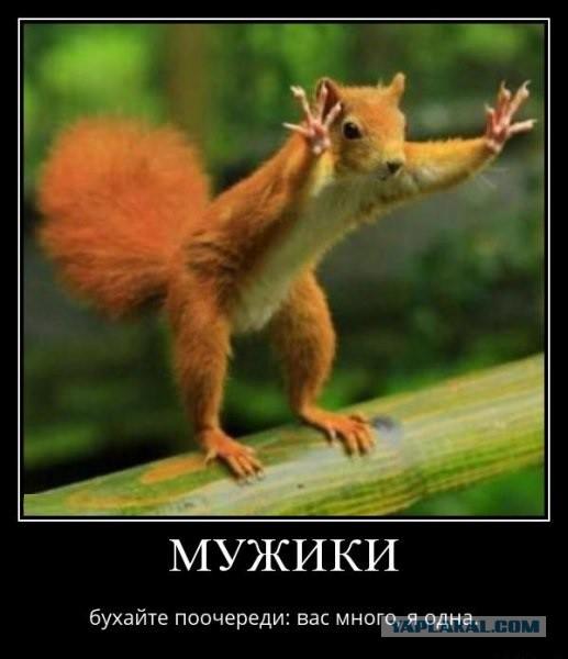 Пьяный водитель в Комсомольске-на-Амуре