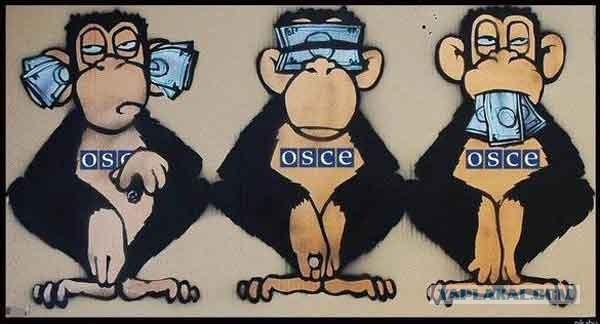 Координатор ОБСЕ по Донбассу Фриш встречался в Москве с советником Путина Сурковым, никому не сообщив об этом, - Ирина Геращенко - Цензор.НЕТ 528