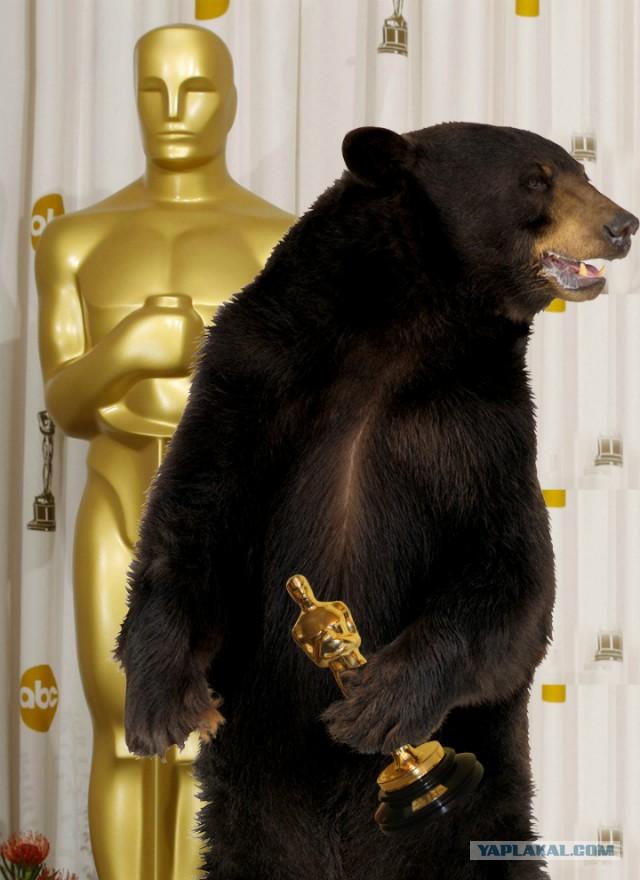 картинка медведь с оскаром принц