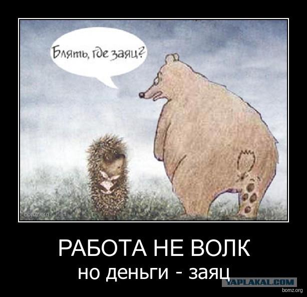 Открытки своими, заяц и медведь приколы в картинках с надписями
