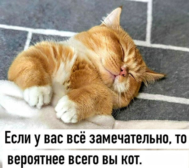 https://s00.yaplakal.com/pics/pics_original/9/4/8/14720849.jpg