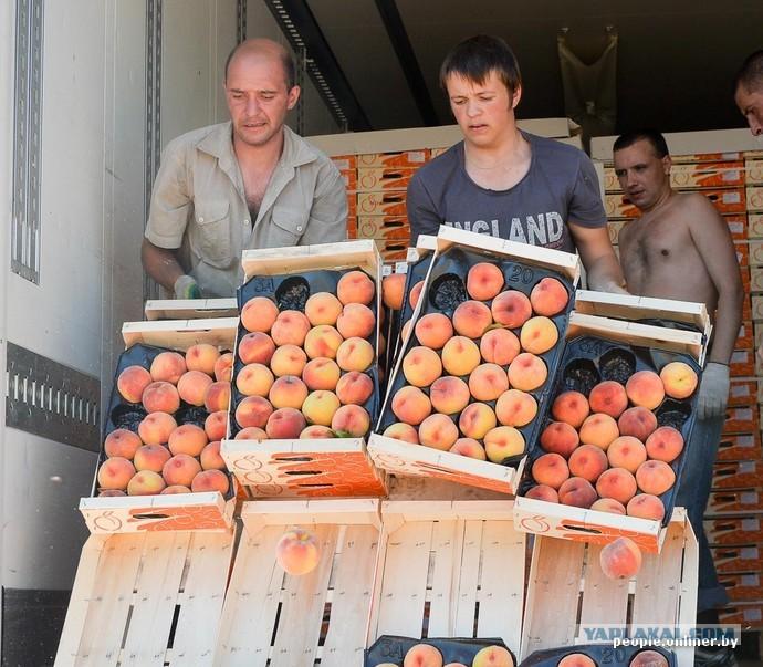 006f1efc4ef8 Уничтожение продуктов набирает обороты - уничтожено больше 200 тонн ...